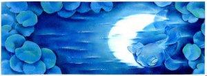 fish and moon